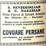 Nevsehrlian2
